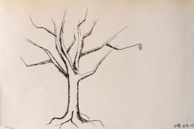 a tree a day, web-2