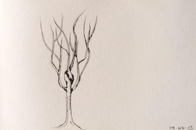 a tree a day, web-4