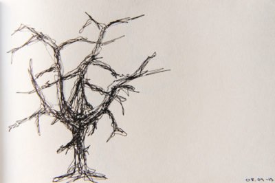 a tree a day, web-7